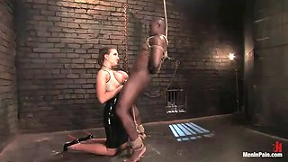 busty mistress has fun torturing a servant with a big black cock